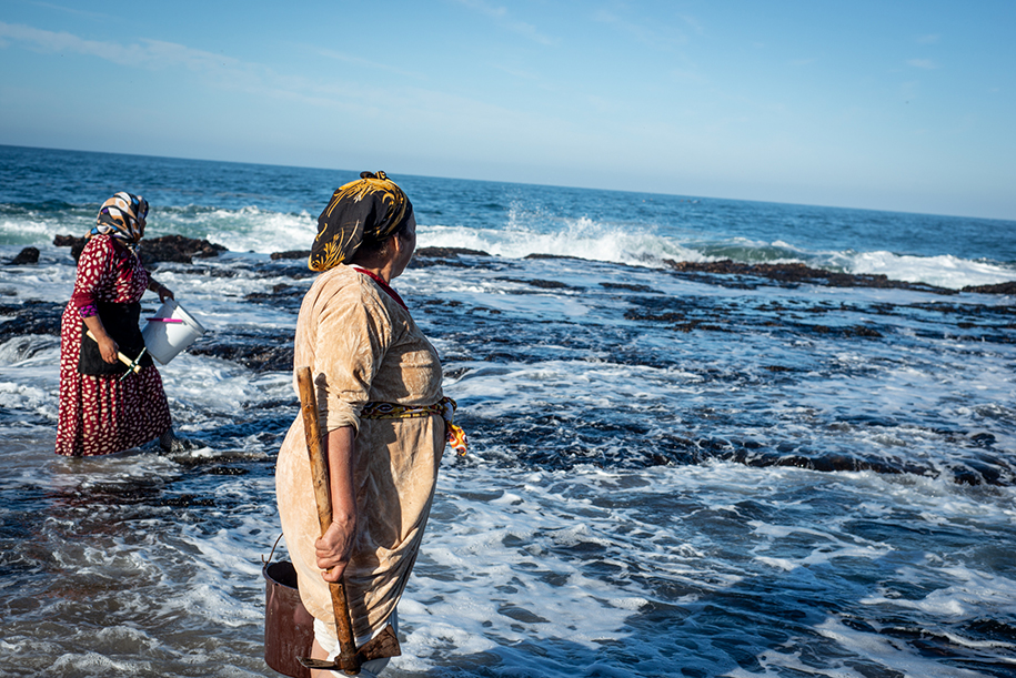 Berber women woking hard with axes to dig for the mussels. The waves are high and come dangerously close by.
