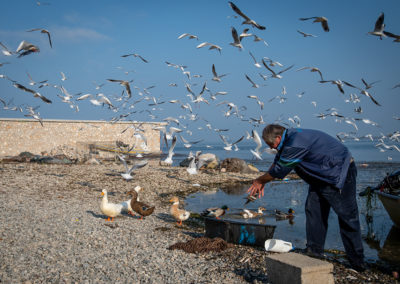 Fisherman selecting his fish on the beach. Seagulls flying all around him, hoping to get a bite of his fish. Travel work photography